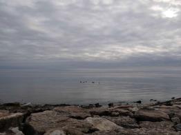 Lac Ontario - Décembre 2015